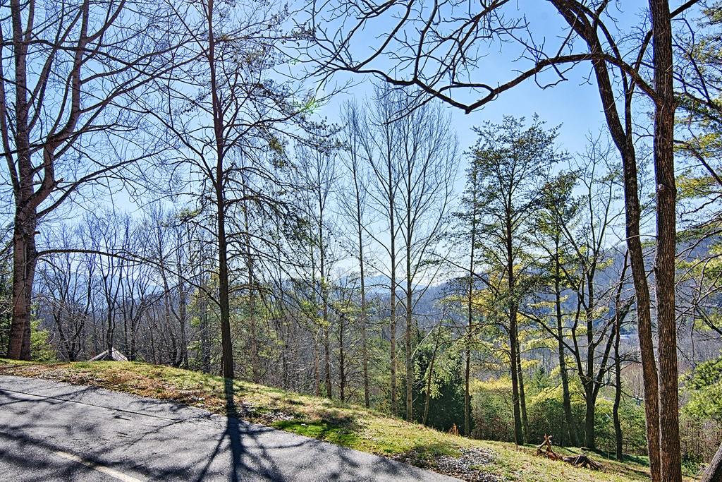 110 Buffalo Trl , 10 Asheville North Carolina 28805 Land for Sale