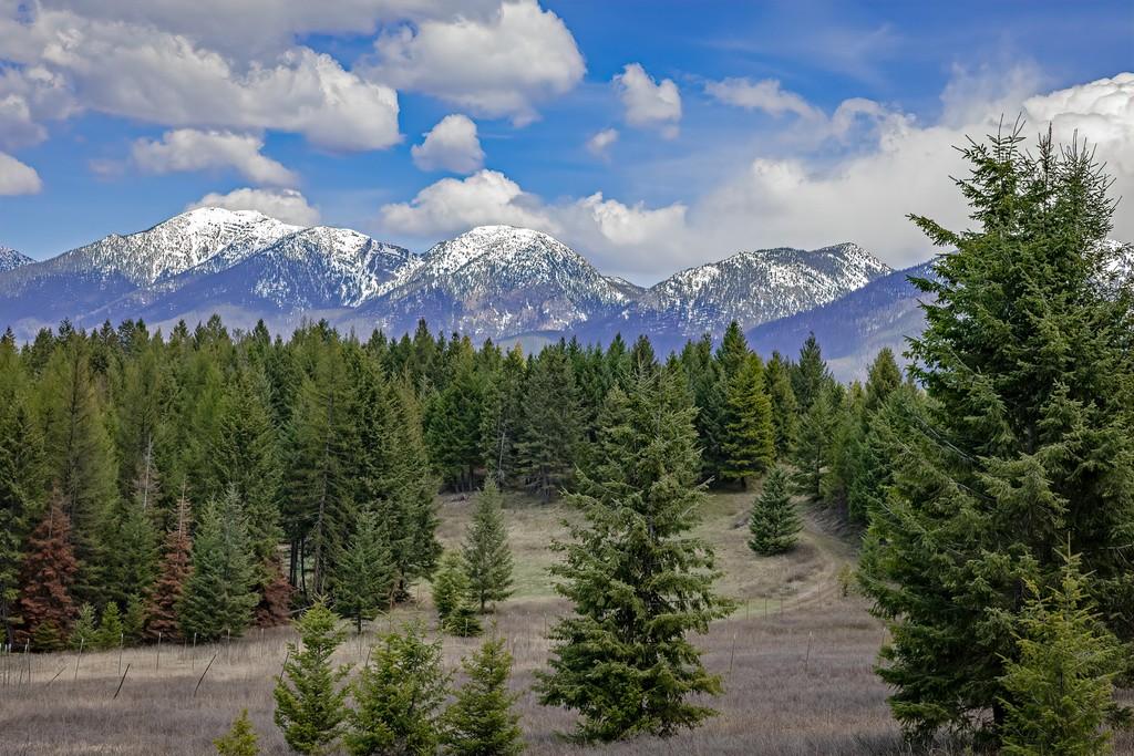 5110 Mt-35 Kalispell Montana 59901 Land for Sale