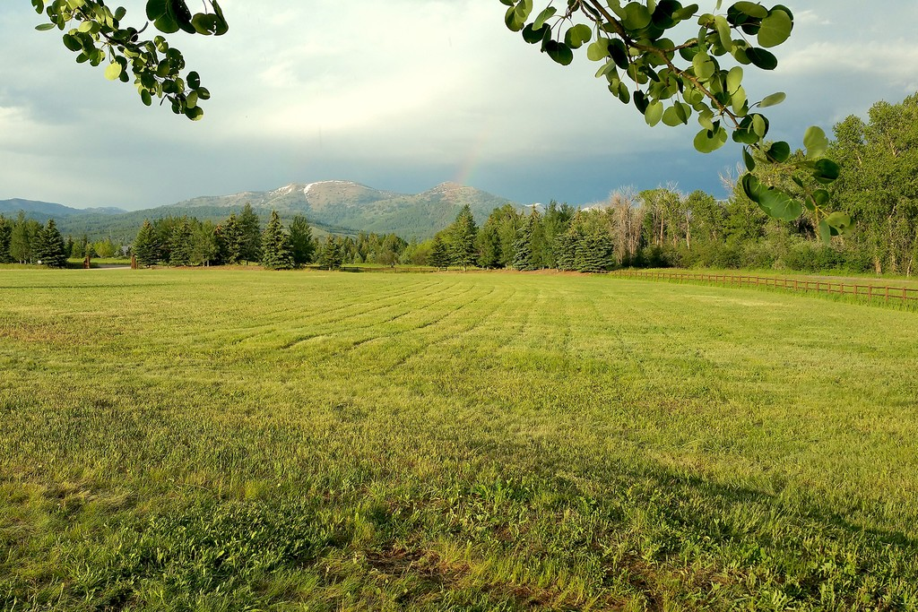 65 Creekside Road Alta Wyoming 83414 Land for Sale