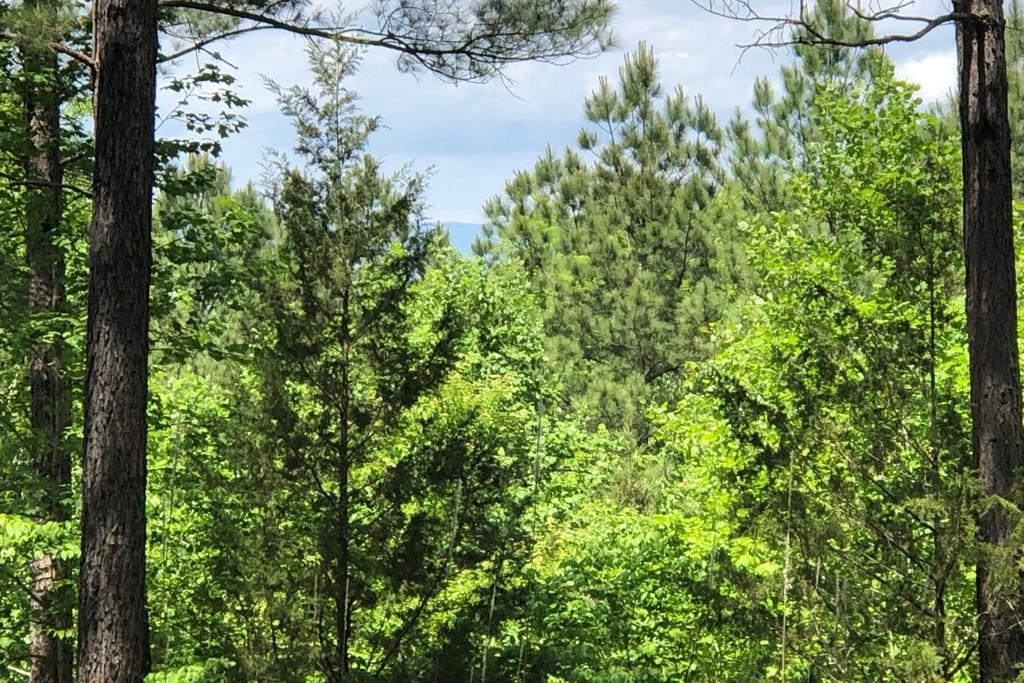 CKS 1-15 Six Mile South Carolina 29682 Land for Sale