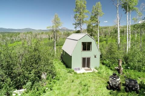 Homes For Sale: Hayden, Colorado, United States