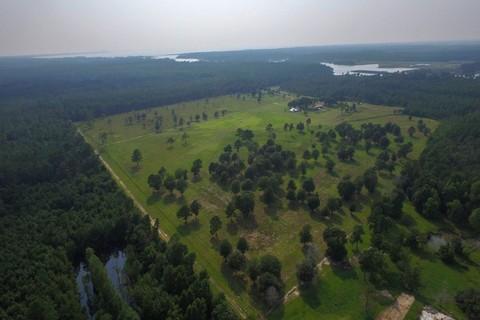 Homes For Sale: Alabama, United States