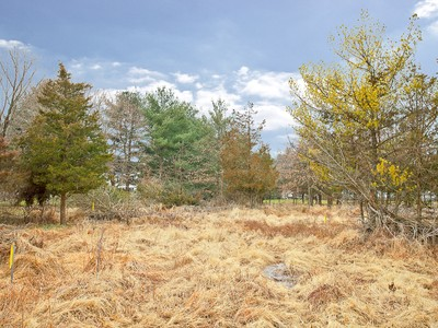 Terrain for sales at Beautiful Building Lot - Hopewell Township 8 Blue Spruce Dr Pennington, New Jersey 08534 États-Unis