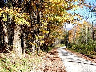 Land for sales at Estate Parcel or Investment Potential 0 Three Maple Drive Manchester, Vermont 05255 United States