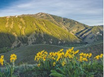 Land for sales at LRN Property 3 Lane Ranch North Property 3   Sun Valley, Idaho 83353 United States