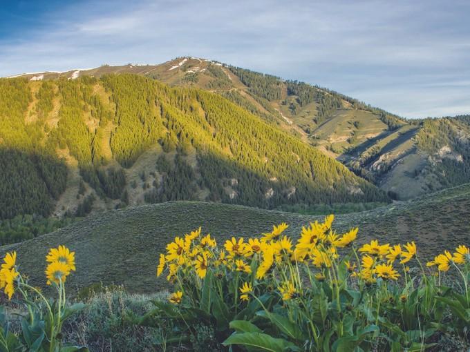 Terrain for sales at Lane Ranch North Lane Ranch North Lot 3  Sun Valley, Idaho 83353 États-Unis