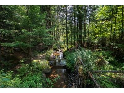 Land for sales at xx Bear Cub Lane  Lake Placid, New York 12946 United States