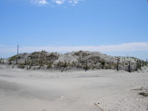 Additional photo for property listing at - 2 S Manor Longport, New Jersey 08403 United States