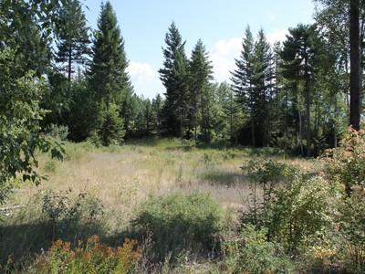 Terrain for sales at 101 S Prairiesmoke Circle  Whitefish, Montana 59937 États-Unis