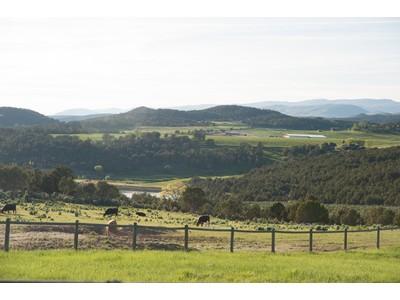 土地,用地 for sales at Drake Trust TBD County Road 100 Carbondale, 科罗拉多州 81623 美国