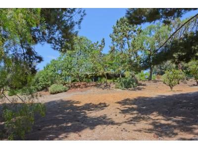 Einfamilienhaus for sales at 2142 13th Street  Encinitas, Kalifornien 92024 Vereinigte Staaten