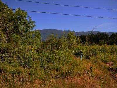 Ferme / Ranch / Plantation for sales at Riverfront Acreage 7000 Swanson Road  Port Alberni, Colombie-Britannique V9Y8L7 Canada
