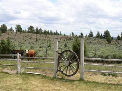 Nông trại / Trang trại / Vườn for sales at Circle F Ranch 0 Merrill Road Brothers, Oregon 97712 Hoa Kỳ