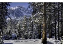 Terreno for sales at Spectacular Ski-In/Ski-Out Lot 7730 N Lower Granite Ridge   Teton Village, Wyoming 83025 Stati Uniti