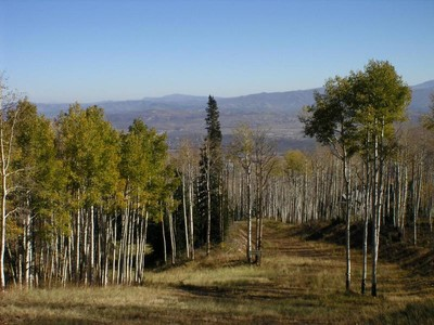 Land for sales at Stunning Colony Homesite 62 White Pine Canyon Rd Park City, Utah 84098 United States