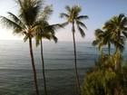 Квартира for  rentals at Tropic Seas Oceanfront Charm 2943 Kalakaua Ave #607 Honolulu, Гавайи 96815 Соединенные Штаты