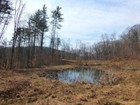 Land for  sales at Grafton Road Acreage Lot 2, 2557 VT Route 35   Townshend, Vermont 05353 United States