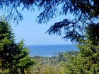 Terrain for  sales at 81 Beautiful Acres VL Estate Drive Seal Rock, Oregon 97376 États-Unis
