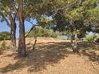 Land for  sales at 65 Palomar Oaks Lane  Redwood City, California 94062 United States