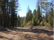 Terreno for sales at Spotted Fawn 29 Spotted Fawn Court   Kalispell, Montana 59901 Stati Uniti