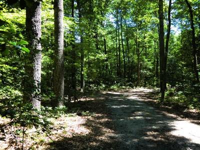 토지 for sales at Mineral Springs Plantation 13709 Hunting Run Dr  Fredericksburg, 버지니아 22407 미국