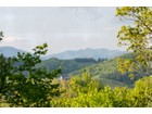 Land for  sales at Three Top Mountain TBD B C Hunter/ Hwy 88   West Jefferson, North Carolina 28694 United States