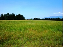 Land for sales at Glacier Ranch 187 Whispering Meadows Trail Lot 118   Kalispell, Montana 59901 United States