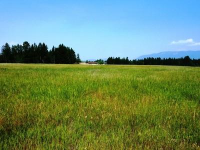 地產 for sales at Glacier Ranch 187 Whispering Meadows Trail Lot 118 Kalispell, 蒙大拿州 59901 美國