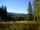토지 for sales at Moose Crossing 484 Moose Crossing Lot 1 Columbia Falls, 몬타나 59912 미국