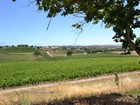 Einfamilienhaus for  sales at Professional Vineyard Operation 4825 Mill Road   Paso Robles, Kalifornien 93446 Vereinigte Staaten