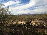 Property Of Stunning Homesites Located Near the end of the Line on Golder Ranch