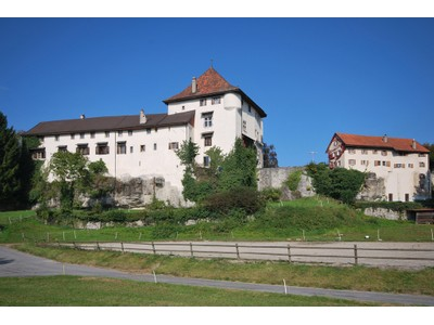 Moradia for sales at Magnificent castle  Other Vaud, Vaud 1616 Suíça