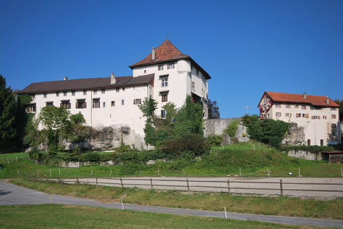Single Family Home for sales at Magnificent castle  Other Vaud, Vaud 1616 Switzerland