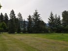 Terrain for sales at Rare Lot with Mature Trees Nhn 12th Avenue W Columbia Falls, Montana 59912 États-Unis