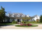 Single Family Home for  sales at 8100 Tillinghast 8100 Tillinghast Drive  Dublin, Ohio 43017 United States