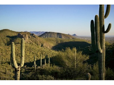 Land for sales at Gorgeous Views from this 3.48 Acre Desert Mountain Homesite 9179 E Grapevine Pass #334  Scottsdale, Arizona 85262 United States