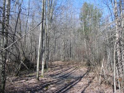 Land for sales at 62nd B 62nd Street  Holland, Michigan 49423 Vereinigte Staaten
