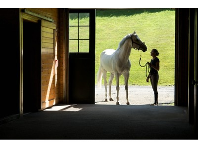 Fazenda / Quinta / Rancho / Plantação for sales at Equestrian Property 139 Otter Lane  Warren, Vermont 05674 Estados Unidos