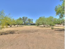 Casa para uma família for sales at 3+ Acres Located In One Of The Best Locations In North Central Scottsdale 7632 E Shea Blvd   Scottsdale, Arizona 85260 Estados Unidos