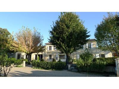 Vinhedo for sales at Gorgeous 4 ha leisure property Bordeaux Bordeaux, Aquitaine 33570 França
