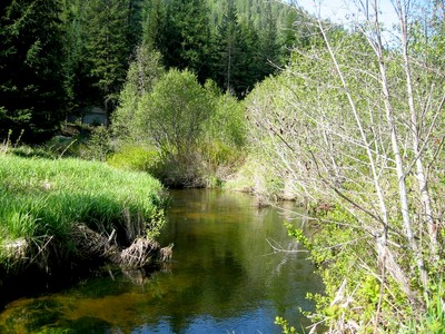 Land for sales at Creek Front Lots near Priest Lake Gordon Drive tax 14 & 16  Priest Lake, Idaho 83856 United States