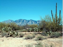 Terreno for sales at Great Development Opportunity or Own Your Own Ranch on 16+ Acres 12162 N Camino Del Plata #1   Oro Valley, Arizona 85742 Estados Unidos