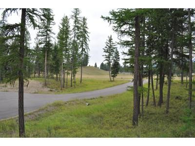 地產 for sales at Fieldstone Subdivision Nhn Red Rock Court  Kalispell, 蒙大拿州 59901 美國