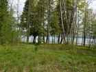 Terrain for sales at Lot 3, M-75 North  Walloon Lake, Michigan 49796 États-Unis