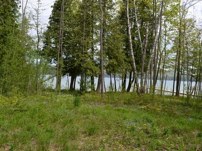 土地,用地 for sales at Lot 3, M-75 North   Walloon Lake, 密歇根州 49796 美国