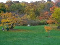 集合住宅 for sales at 48 Jamaica St   Jamaica Plain, Boston, マサチューセッツ 02130 アメリカ合衆国