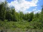 Land for  sales at South Ridge Estates Candeleros Court Lot 5   Ludlow, Vermont 05149 United States