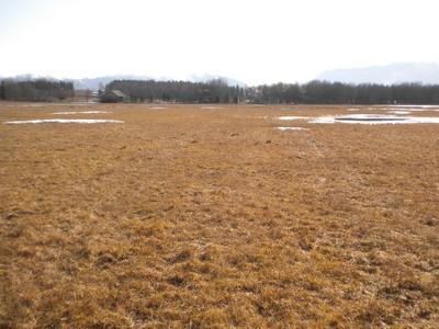 Terrain for sales at Beautiful 20 Acres 285 Monegan Road Whitefish, Montana 59937 États-Unis