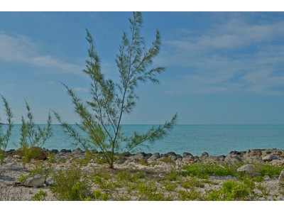 Terreno for sales at Vacant Land ~ Turtle Tail Turtle Tail, Providenciales Turks E Caicos