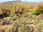 Land for sales at Ready to Build! 34 E Ridgeview LN 34 Carefree, Arizona 85377 United States